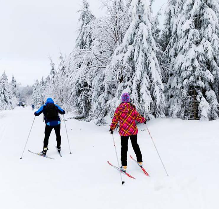 Apartmány Bedřichov - ubytovaní Bedřichov - lyžování Bedřichov - lyžování na horách